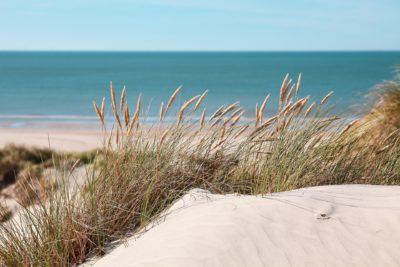yoga wellness retreat qld queensland beach sand
